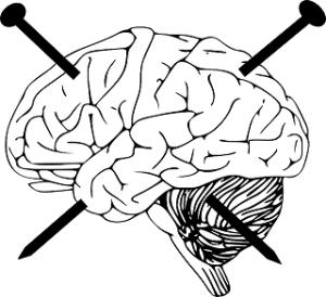 brain-312428_640