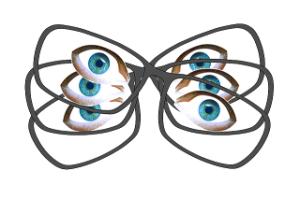 glasses-492319_640